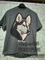 Kaos Husky Blue Eyes